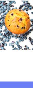 Easy Blueberry (1)