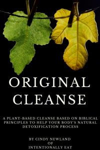Image of ebook cover for Original Cleanse by Intentionally Eat with two leaves hanging